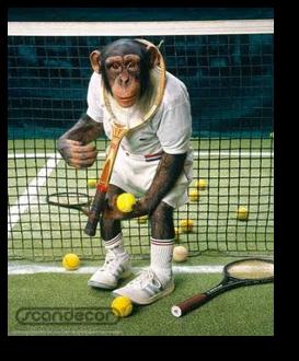 MonkeyTennis